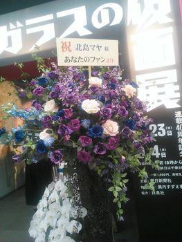 NCM_4784.jpg